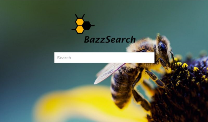 Bazzsearch.com page