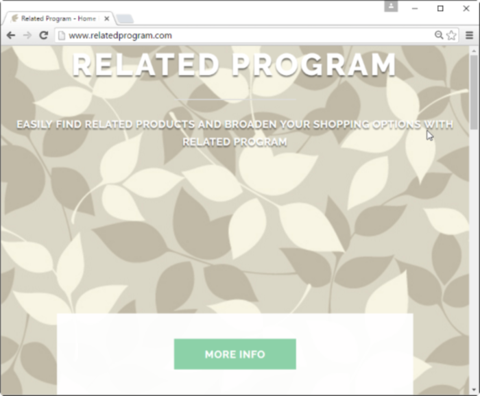 Related Program page