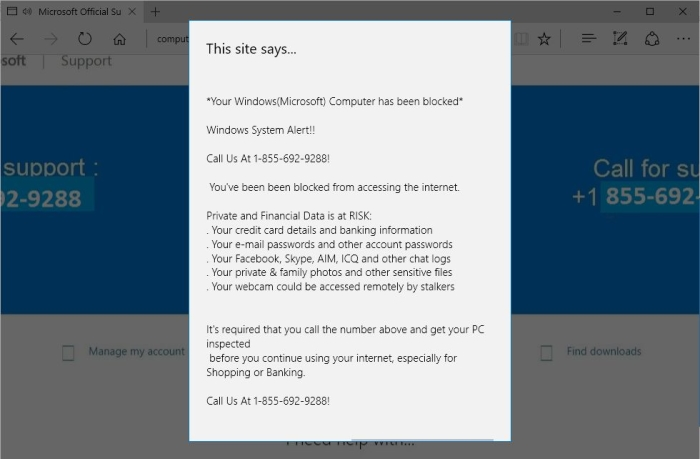 YOUR COMPUTER HAS BEEN BLOCKED alert