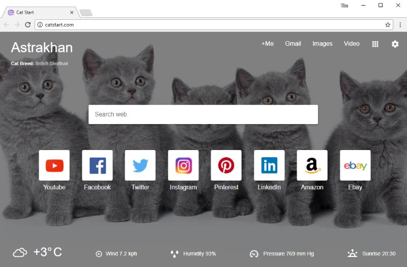 catstart.com