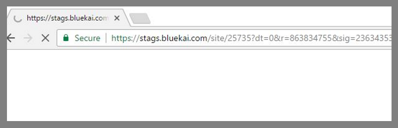 remove Stags.Bluekai.com (Mac)