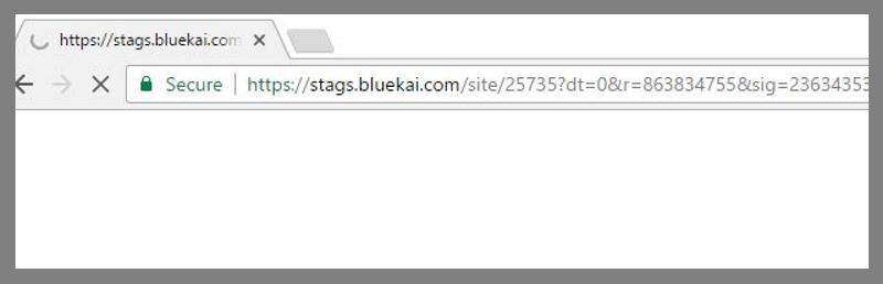 remove Stags.Bluekai.com (Mac)
