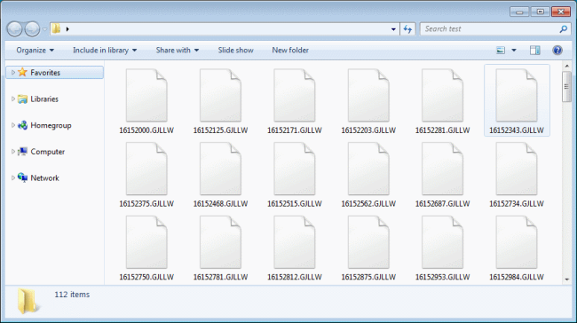 Rapid 2.0 ransomware