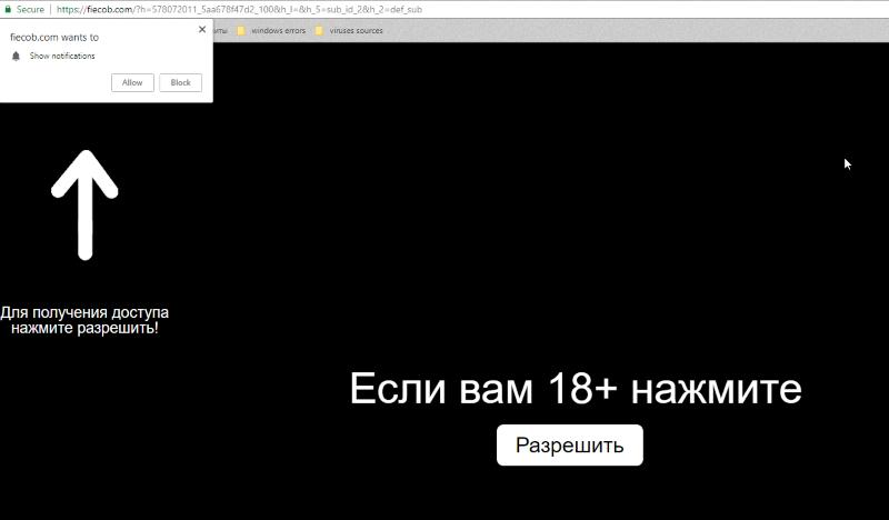 Fiecob.com
