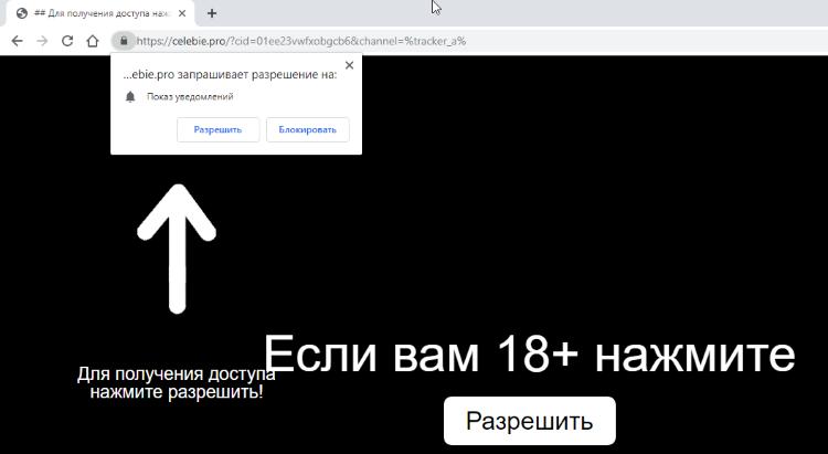 Delete https://Celebie.pro, p8.Celebie.pro, p7.Celebie.pro, w986.Celebie.pro, h64r.Celebie.pro, sphy.Celebie.pro, oz4x.Celebie.pro, n9m9.Celebie.pro virus notifications
